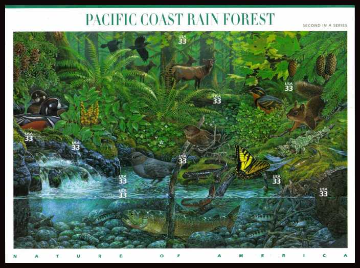 view larger image for  : SG Number MS3748 / Scott Number 3378 (2000) - Nature of America - Pacific Coast Rain Forest<br/>