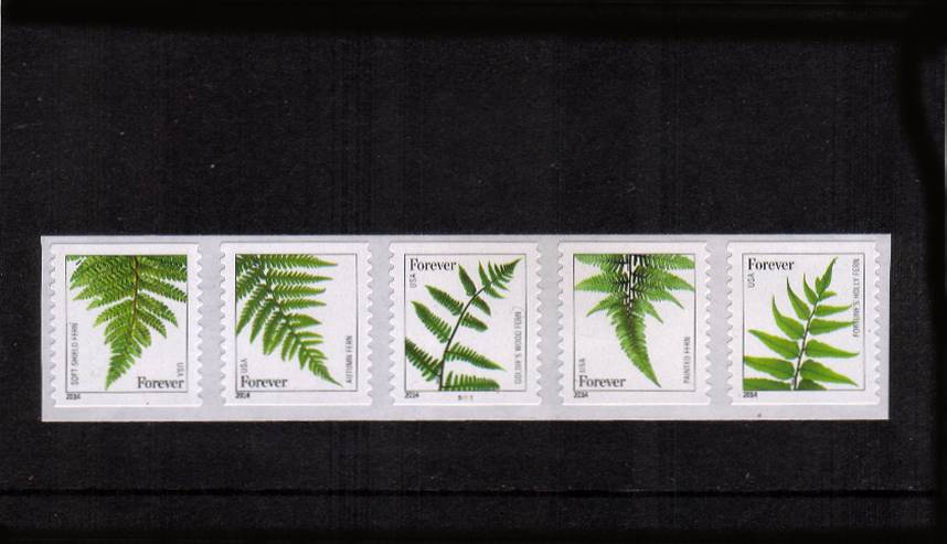 view larger image for  : SG Number  / Scott Number 4973-4977 (2015) - Ferns<br/>