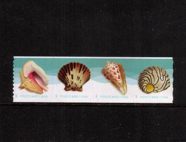 view larger image for  : SG Number  / Scott Number 5167-5170 (2017) - Seashells<br/>