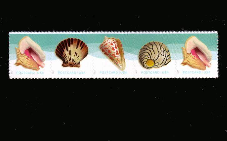 view larger image for  : SG Number  / Scott Number 5163-5166 (2017) - Seashells<br/>